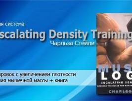 EDT— система тренировок для набора мышечной массы