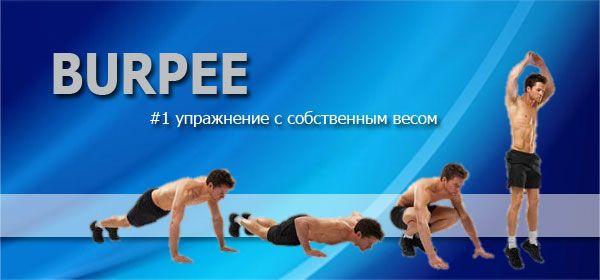 burpee (бурпи, бёрпи) - упражнение с собственным весом номер один